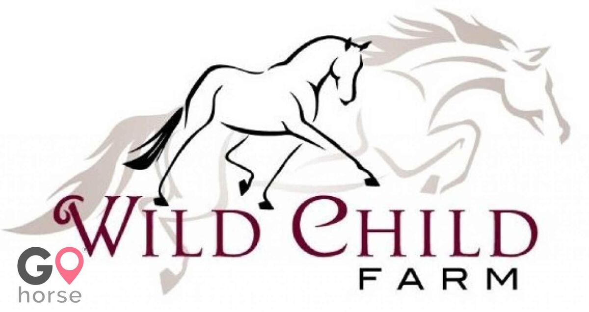 Wild Child Farm Horse stables in Pittston ME 1