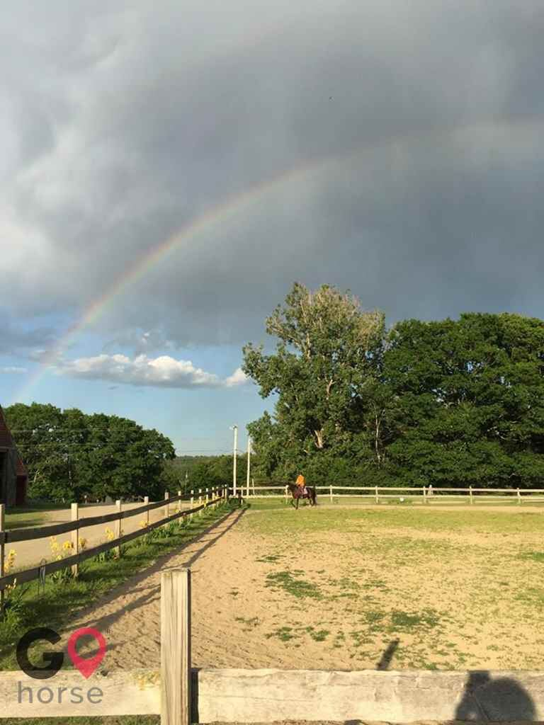 Wild Child Farm Horse stables in Pittston ME 2