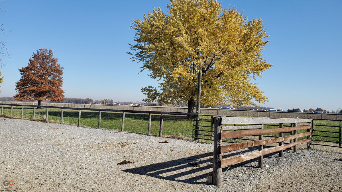 Circle T Ranch Horse stables in Celina OH 6