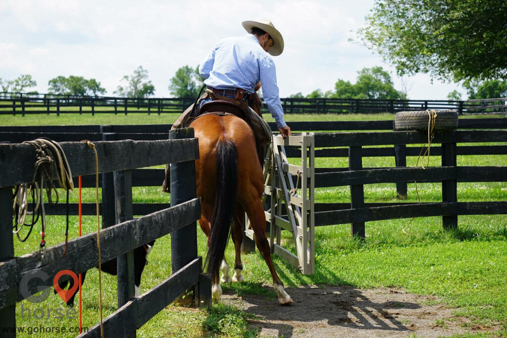 Pear Tree Ranch Horse stables in Citra FL 8