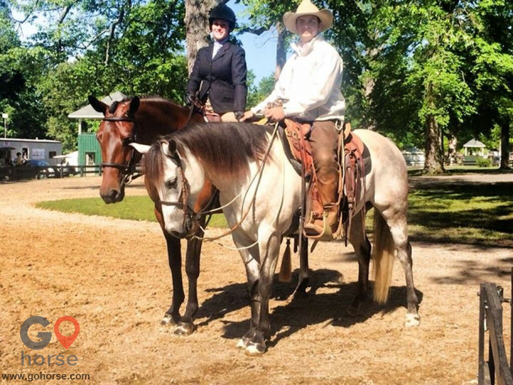 Pear Tree Ranch Horse stables in Citra FL 3