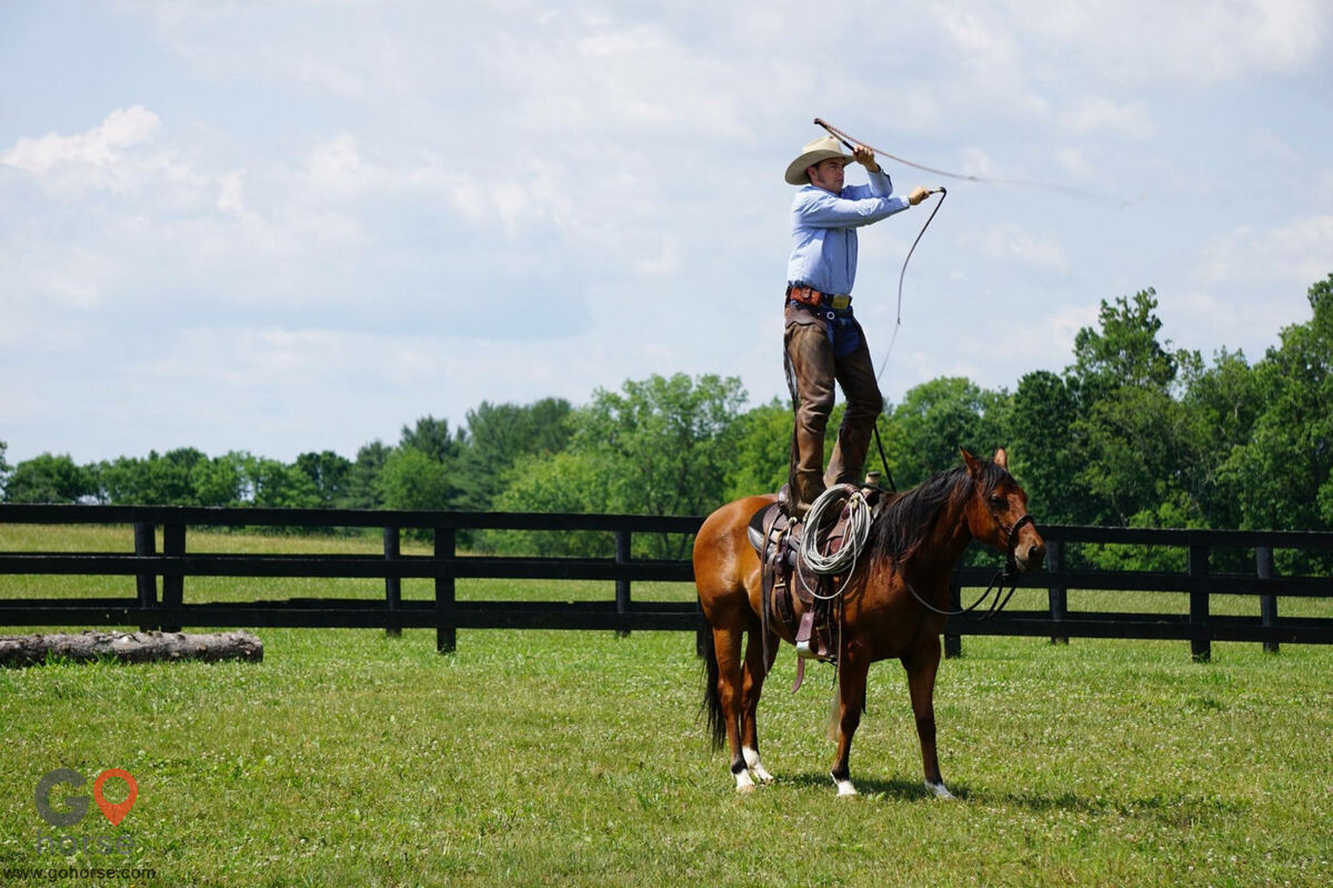 Pear Tree Ranch Horse stables in Citra FL 6