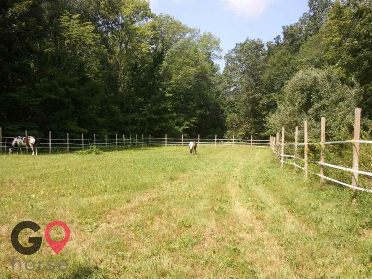 Wareabouts Farm LLC Horse stables in Danielson CT 3