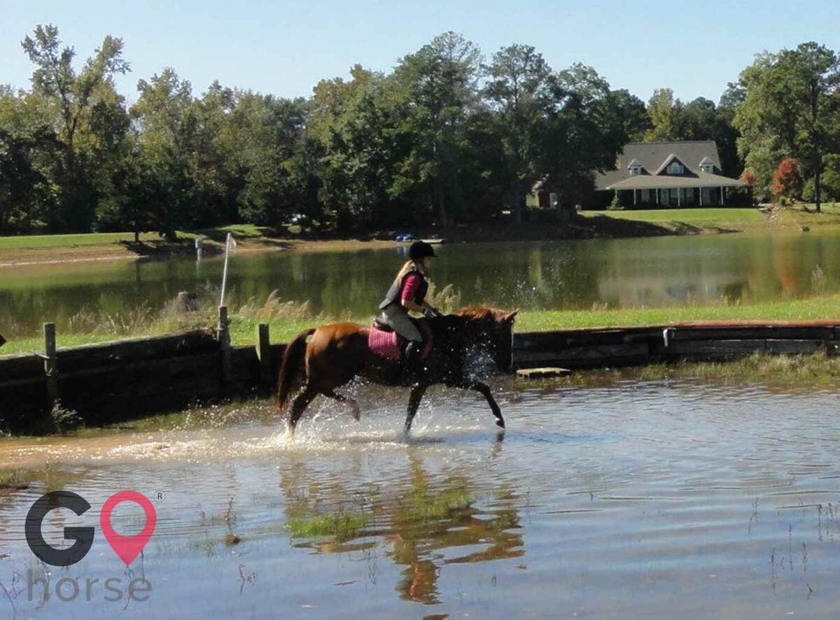 Pony Tail Acres Horse stables in Powder Springs GA 2