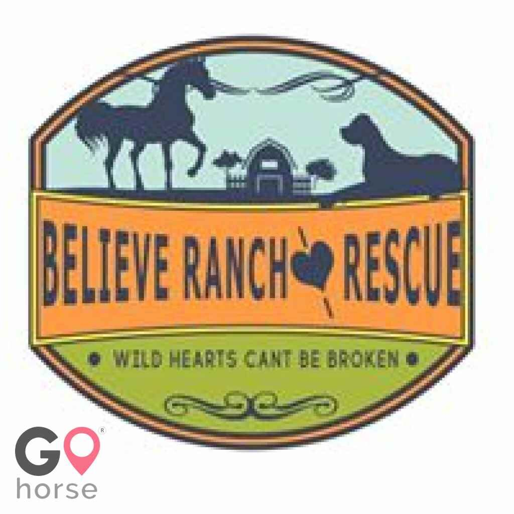 Believe Ranch and Rescue Horse stables in Longmont CO 1