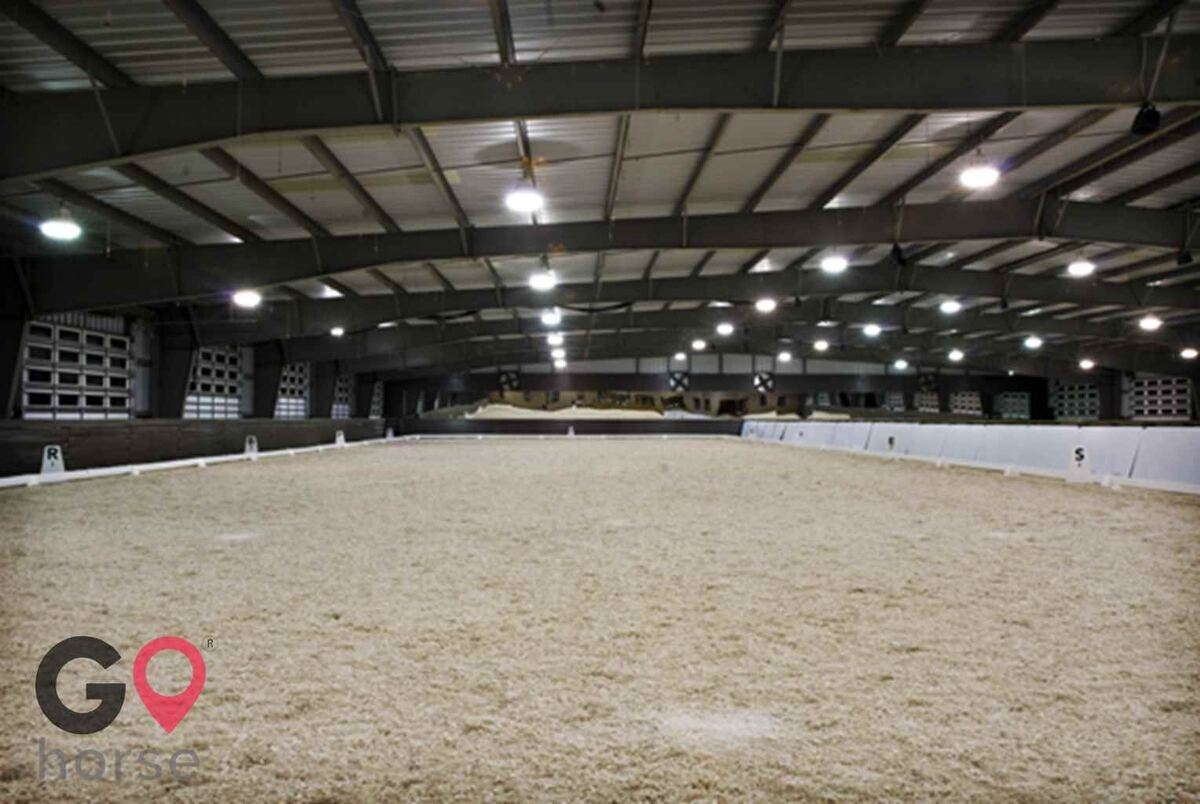 Mid-South Dressage Academy Horse stables in Hernando MS 4