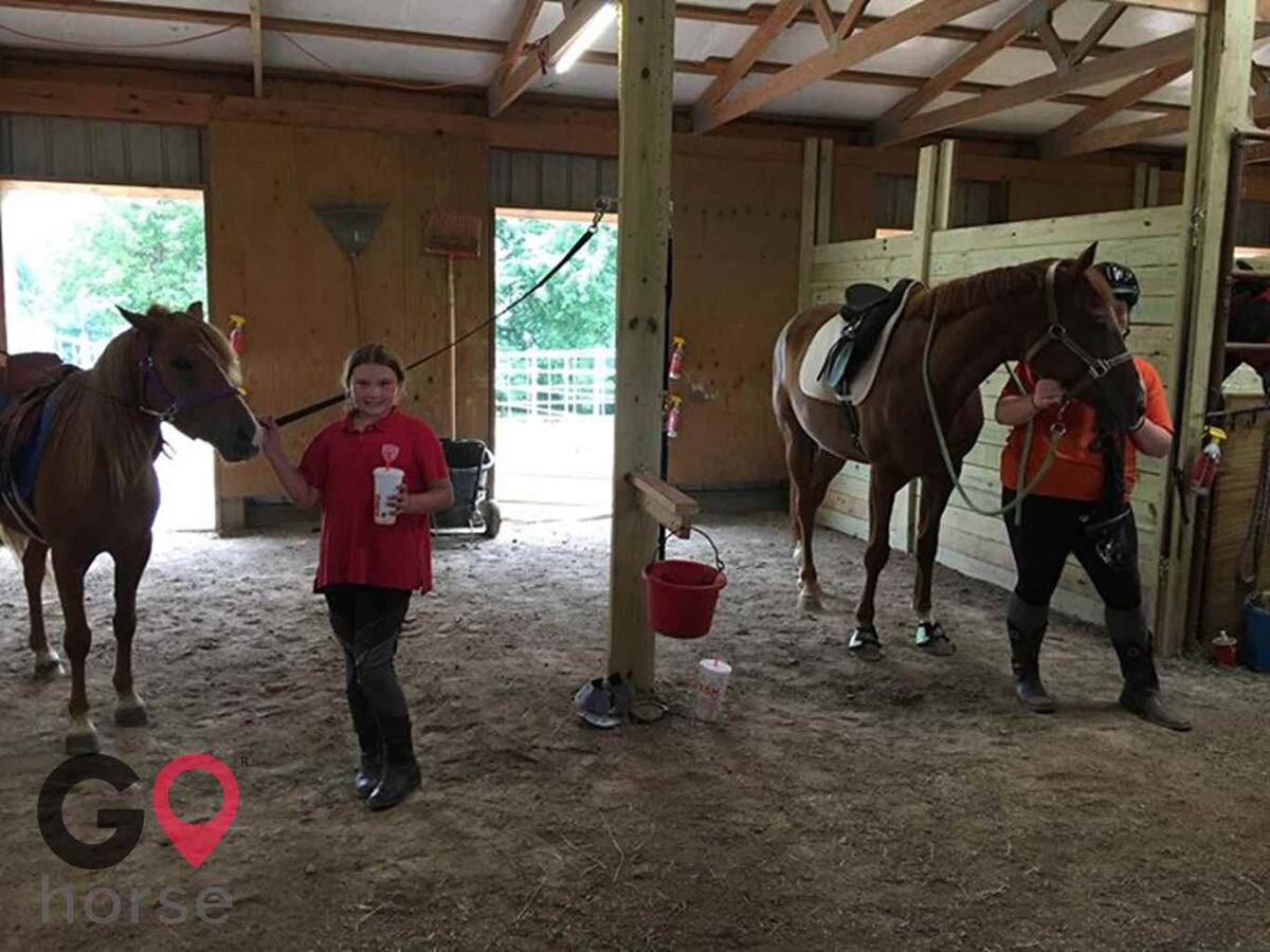 Little Apple Riders Equestrian Center Horse stables in St George KS 4
