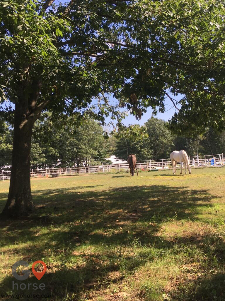 Hideaway Acres Horse stables in Cumberland ME 4