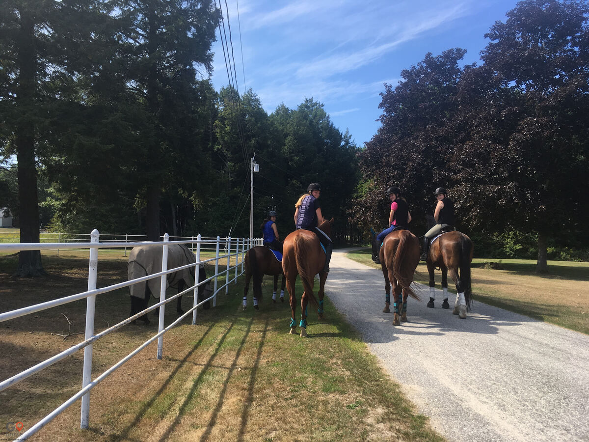 Hideaway Acres Horse stables in Cumberland ME 11