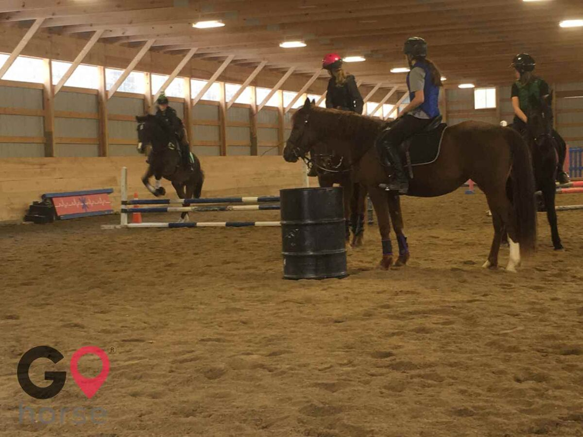 Hideaway Acres Horse stables in Cumberland ME 8