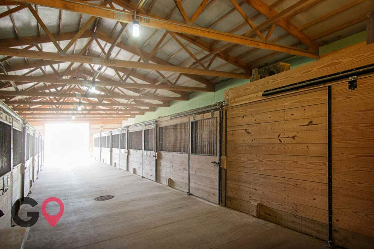 Crown Haven Center Horse stables in Russiaville IN 7