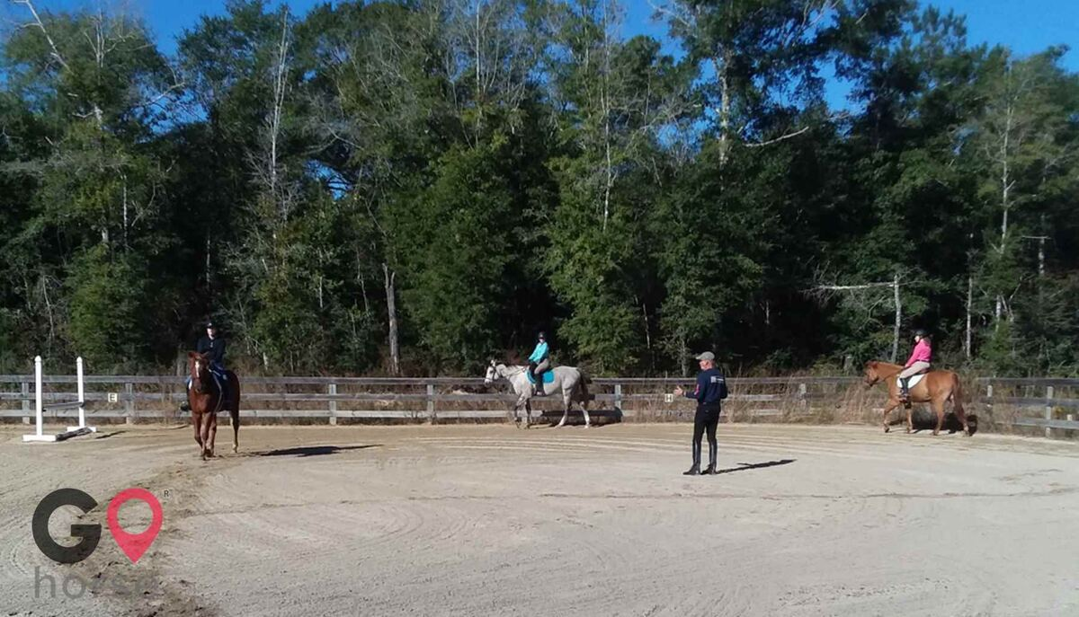 Stormwynd Equestrian Center Horse stables in Defuniak Springs FL 1