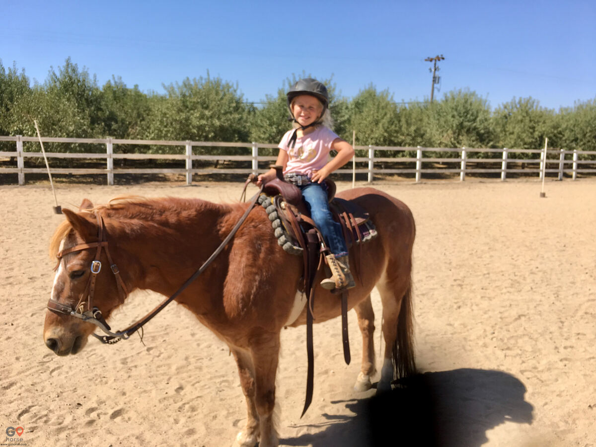 The Groen Family Ranch Horse stables in Ripon CA 2