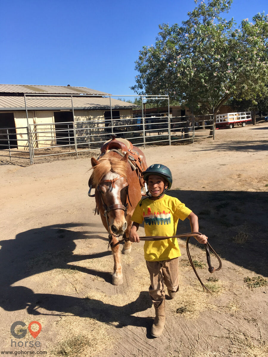 The Groen Family Ranch Horse stables in Ripon CA 1