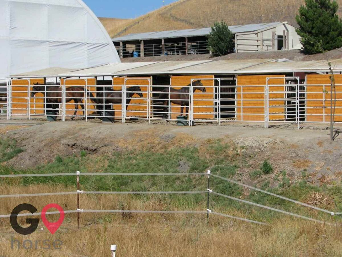 Meandering Creek Equestrian Center Horse stables in Livermore CA 6