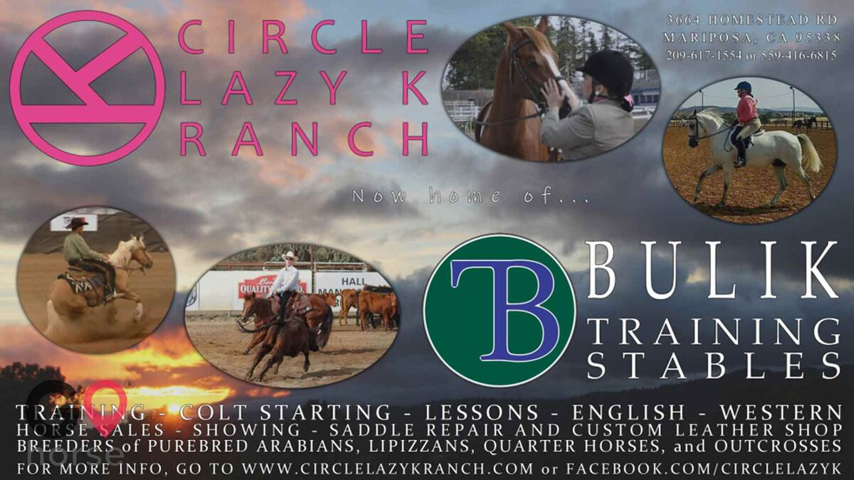 Circle Lazy K Ranch Horse stables in Mariposa CA 7