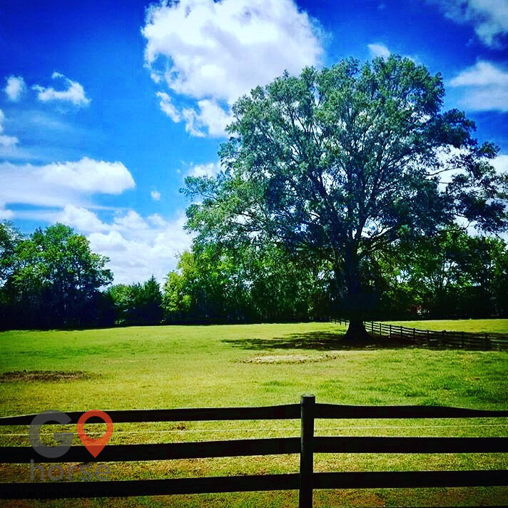 Seven Oaks Equestrian Center Horse stables in Pike Rd AL 3