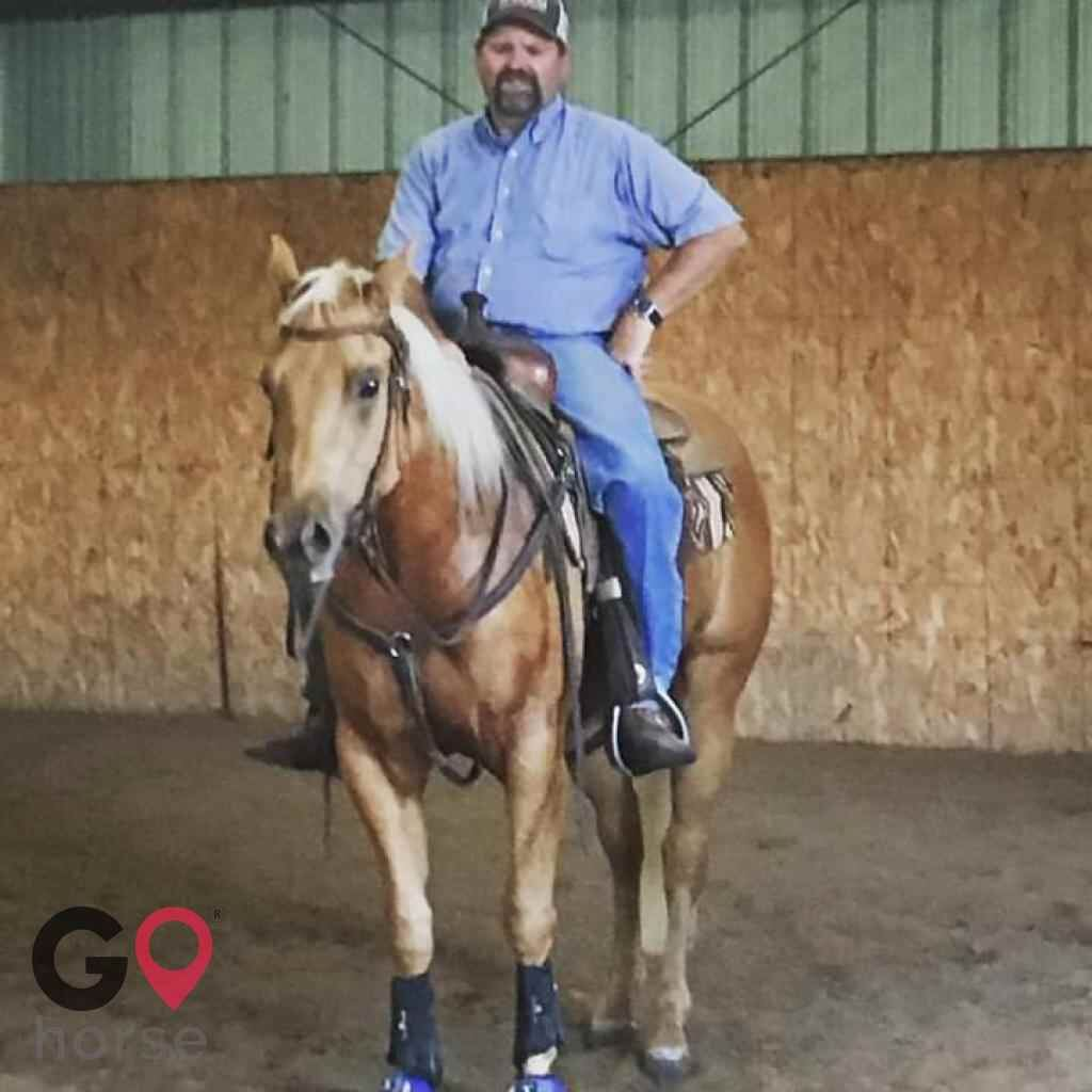 Chuck Nesmith Training Horse stables in Fort Lupton CO 1