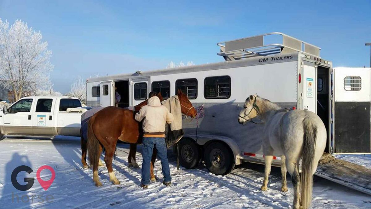 Birt Arena Horse stables in Nampa ID 1