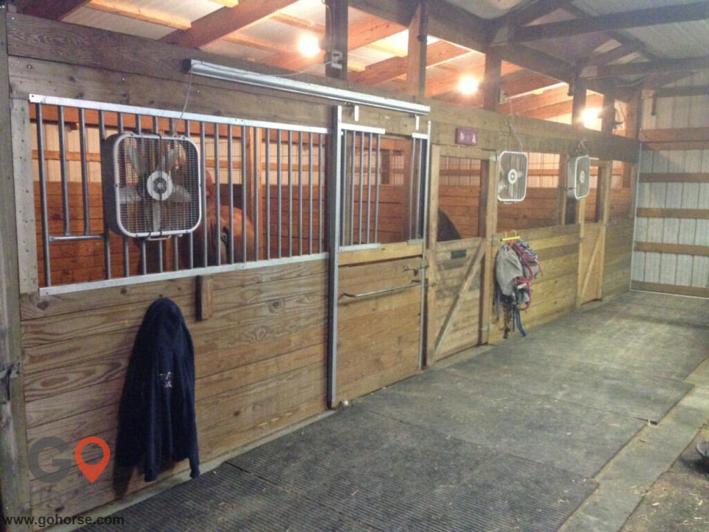 Sheridan Stables & Riding School Horse stables in Fort Wayne IN 6