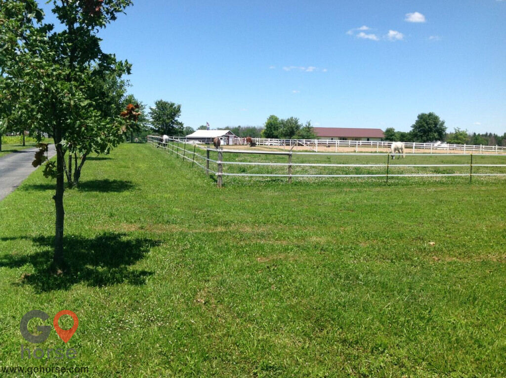 Sheridan Stables & Riding School Horse stables in Fort Wayne IN 5