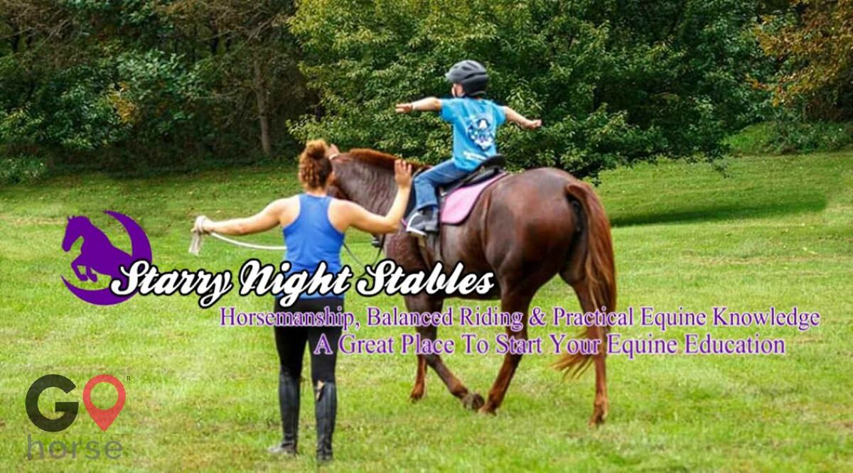 Starry Night Stables Horse stables in Frederick MD 2