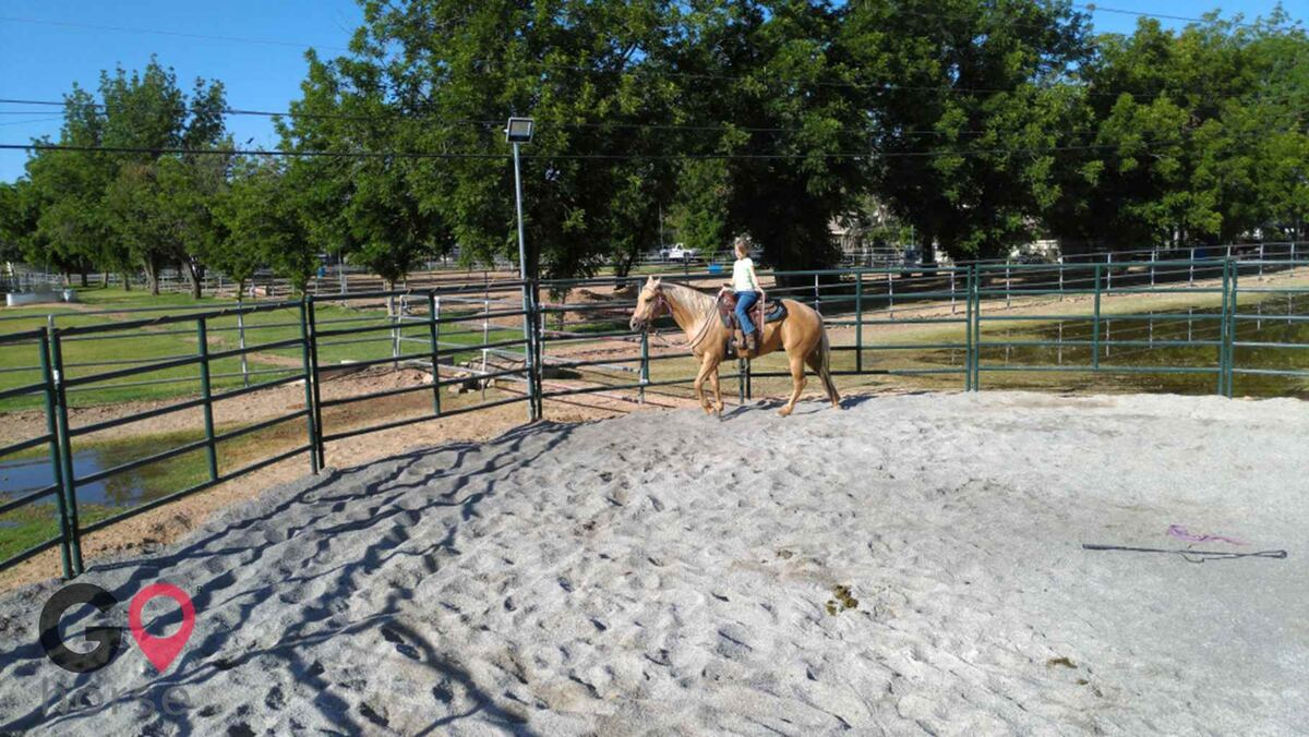 Stable Acres Horse stables in Gilbert AZ 23