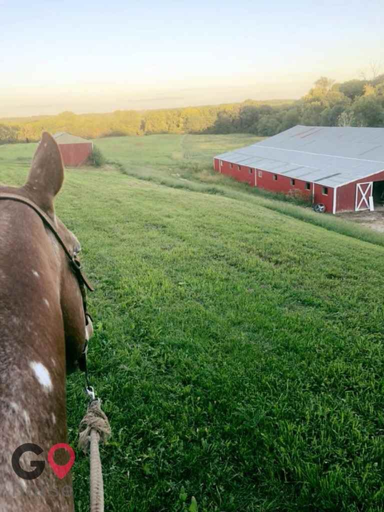 101 Ranch Horse stables in Atchison KS 1