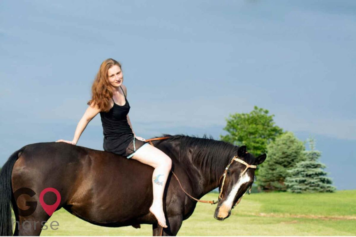 Amber Valley Ranch Horse stables in St Charles IA 1