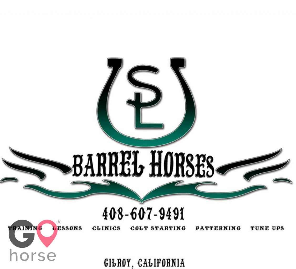 SL Barrel Horses @ LoneStar Riding Academy Horse stables in San Juan Bautista CA 1