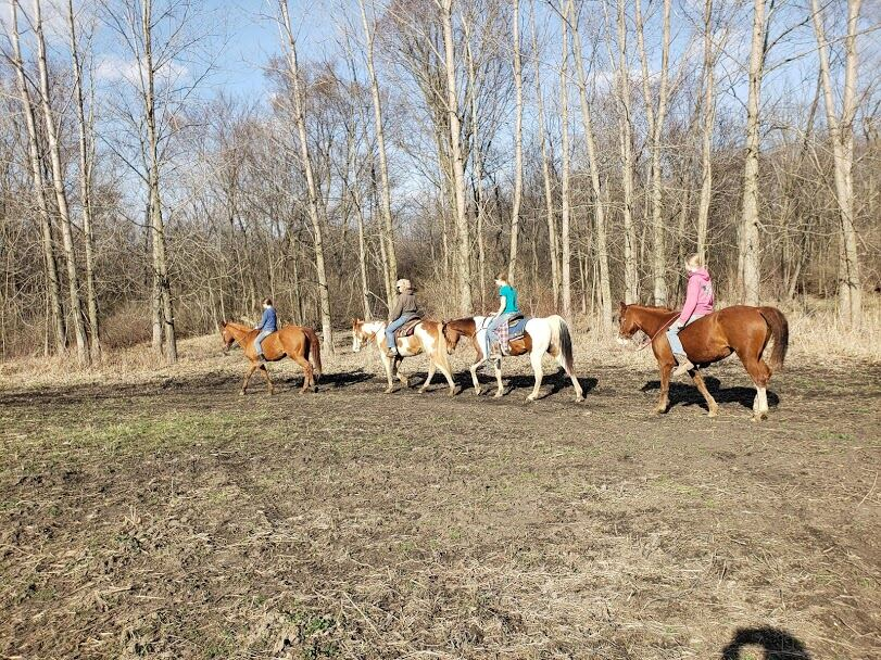 4M Ranch Horse stables in Valparaiso IN 2