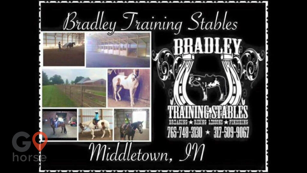 Bradley Training Stables Horse stables in Middletown IN 12