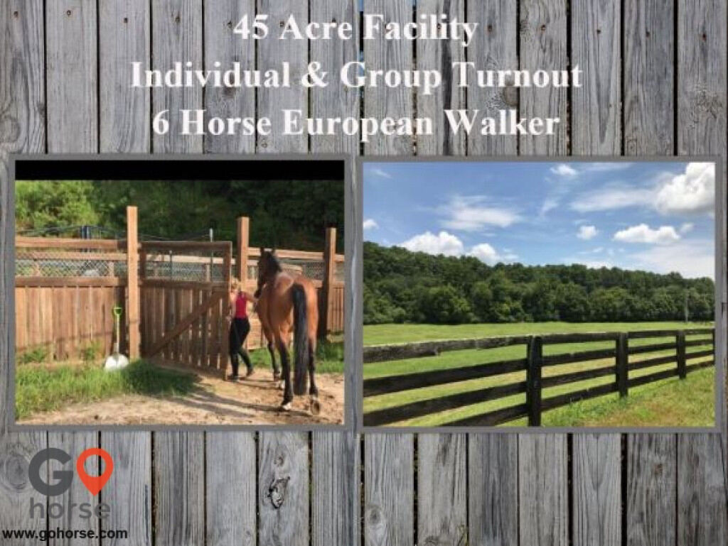 Hunters Glen Equestrian Center Horse stables in Alpharetta GA 7
