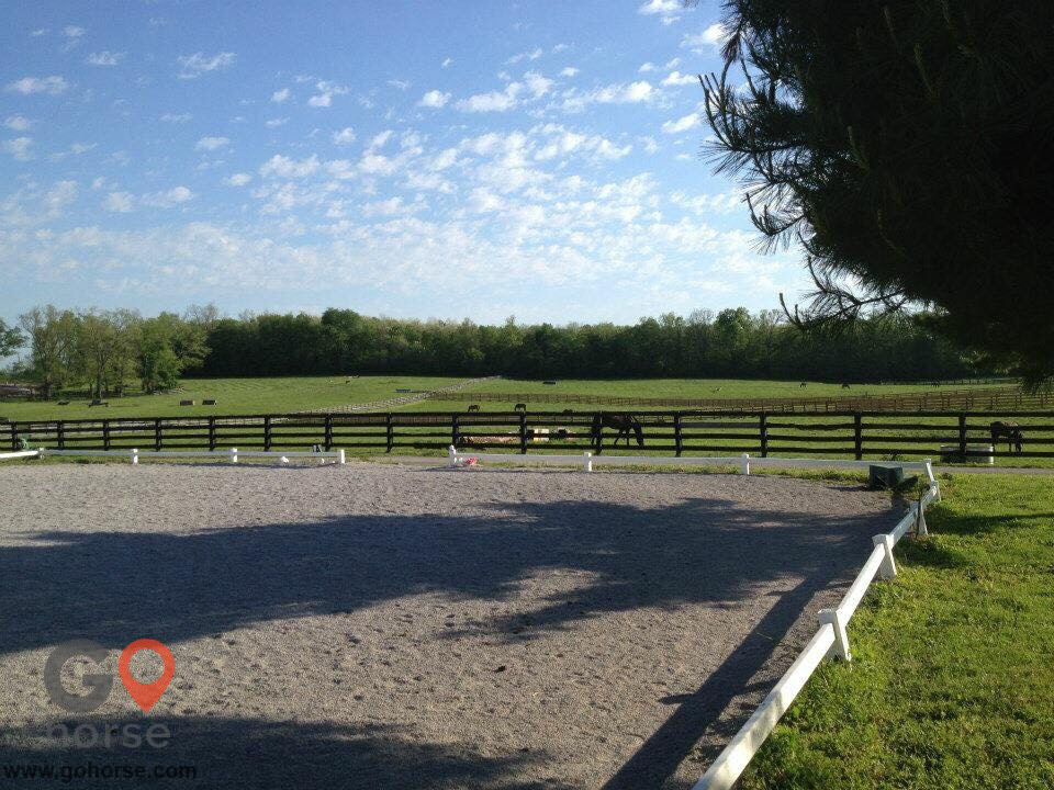 Team CEO Eventing Horse stables in Georgetown KY 3