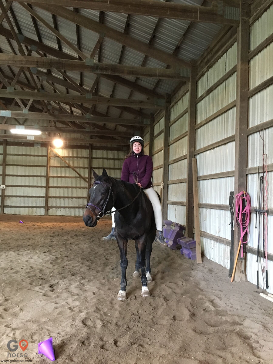 Southport Equestrian Center Horse stables in Indianapolis IN 7