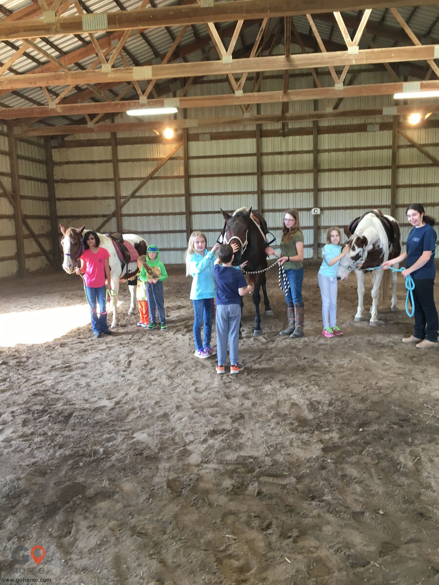 Southport Equestrian Center Horse stables in Indianapolis IN 3