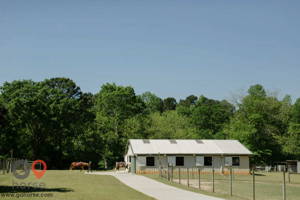 American Dream Farm Horse stables in Statham GA 31