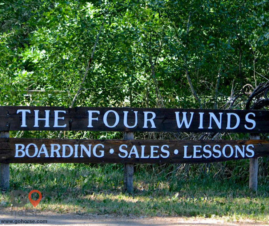 Four Winds Horse stables in Fort Collins CO 28
