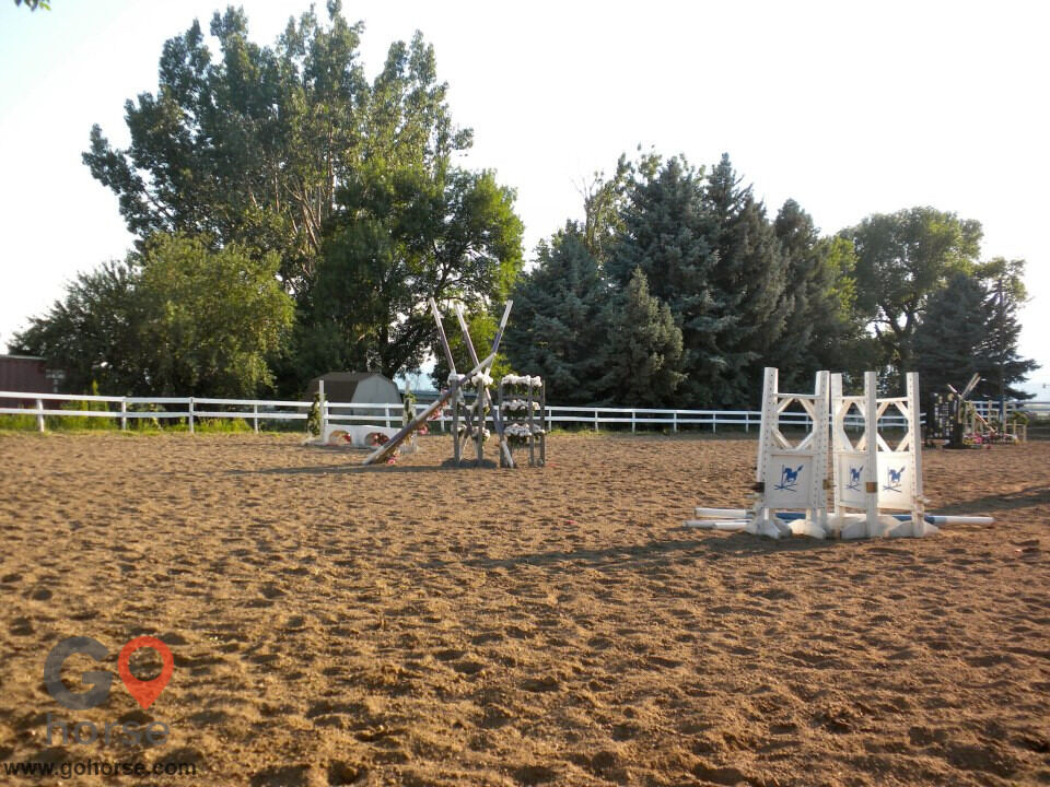 Four Winds Horse stables in Fort Collins CO 5