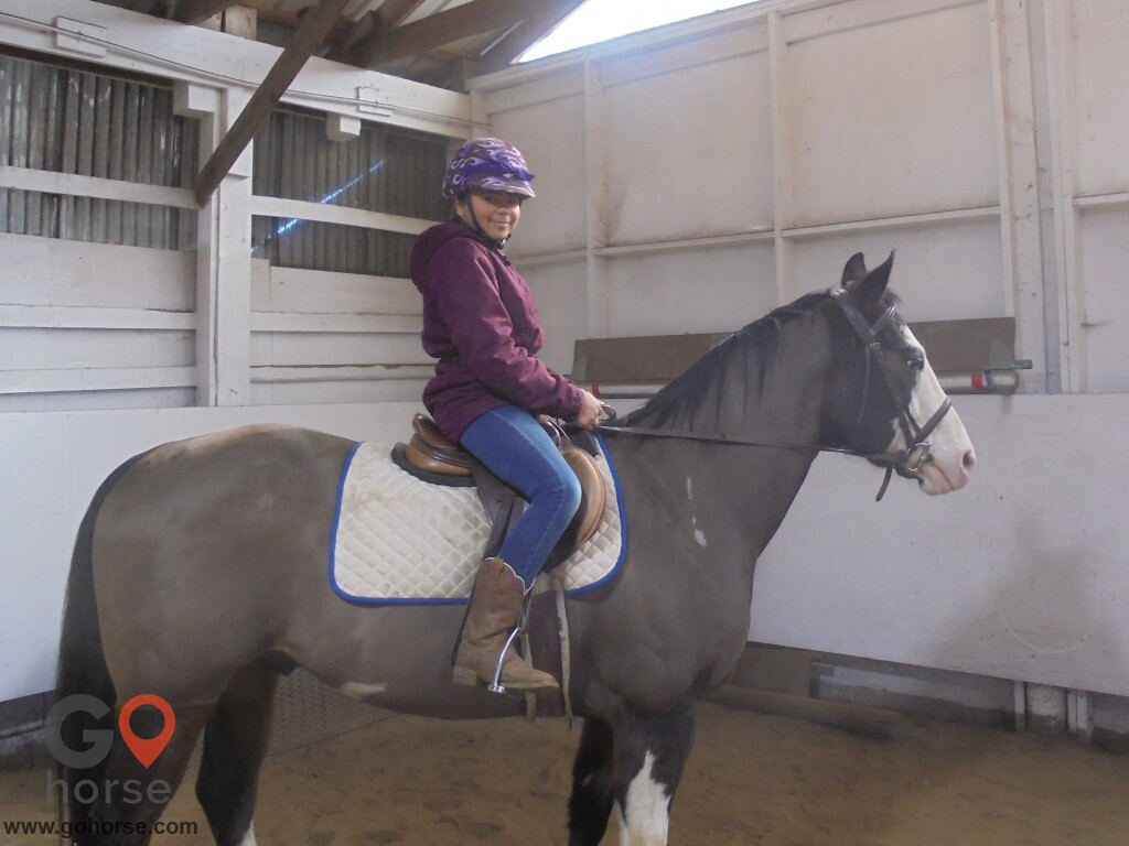 Grandview Farms Equestrian Center Horse stables in Harwinton CT 12
