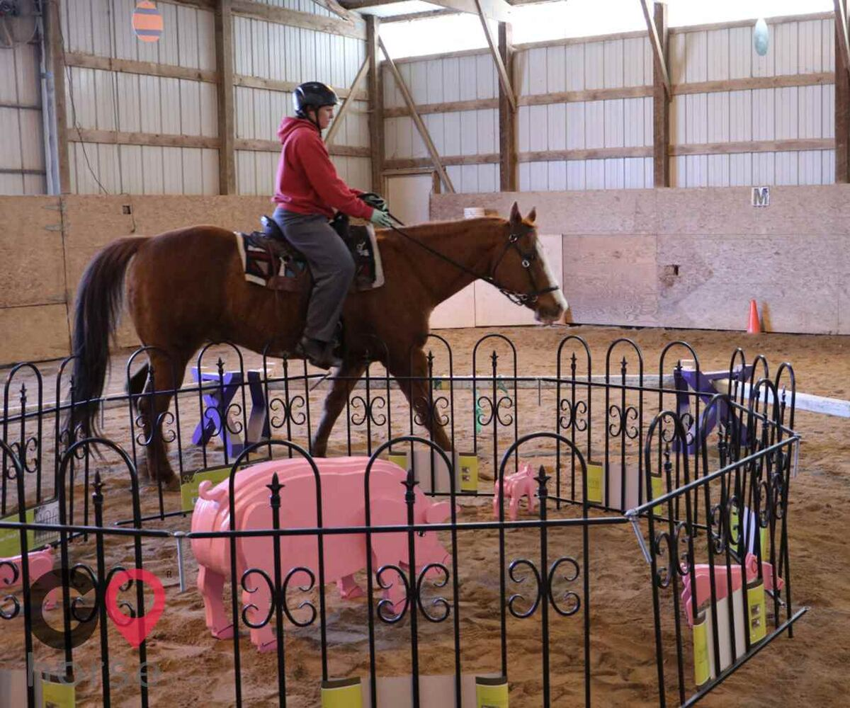 Meadowsweet Ranch Horse stables in Spring Grove IL 12