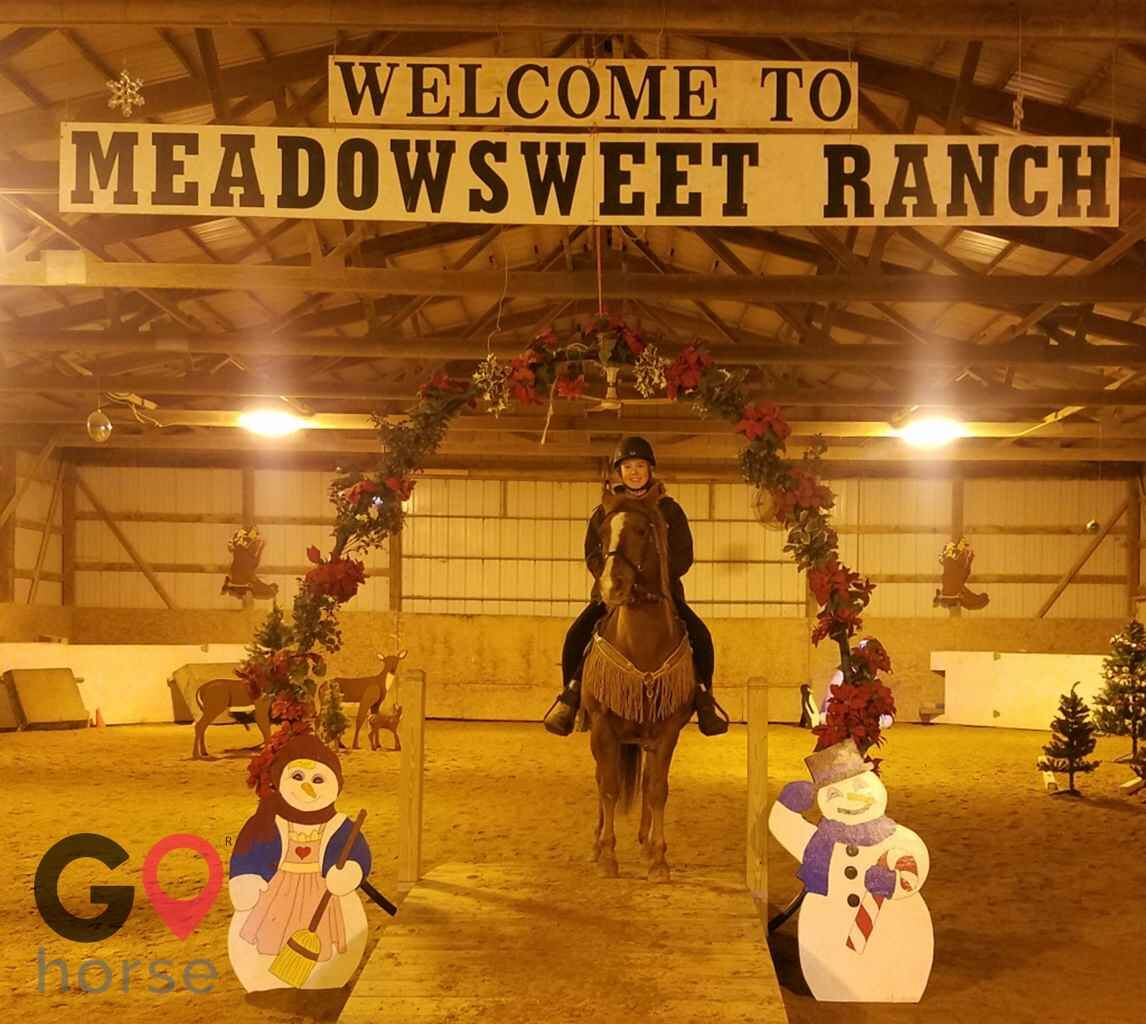 Meadowsweet Ranch Horse stables in Spring Grove IL 7