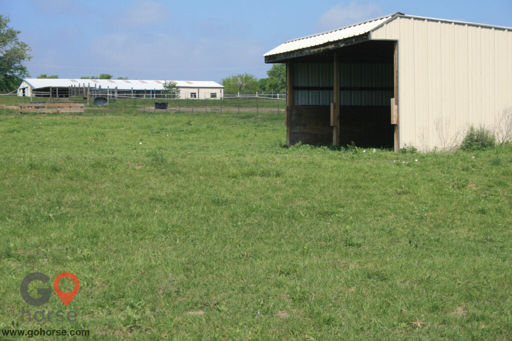 Colonial Equestrian Center Horse stables in Princeton TX 26