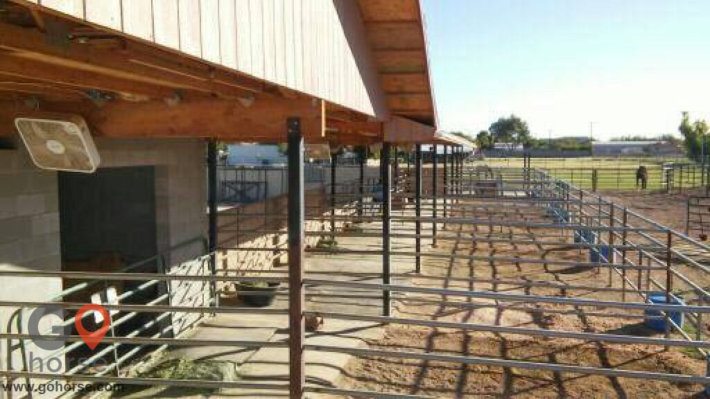 Stable Acres Horse stables in Gilbert AZ 3