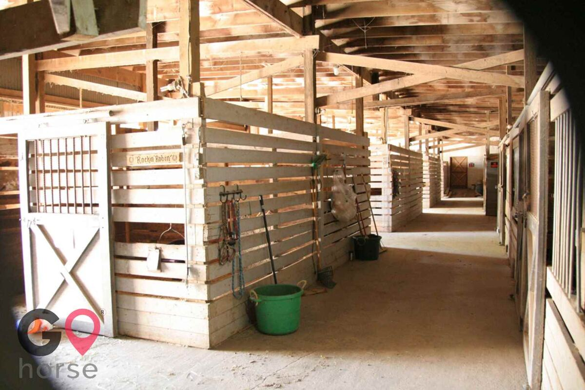 Meadowsweet Ranch Horse stables in Spring Grove IL 3