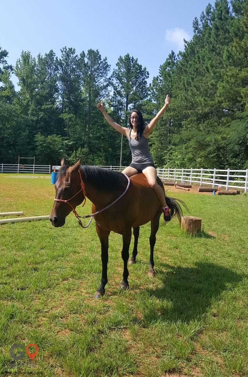 LauraLeigh Farms Horse stables in Dallas GA 4