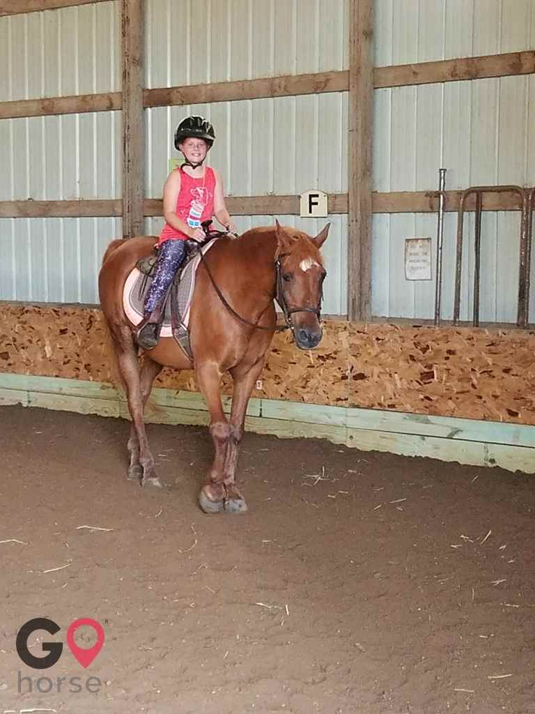 Turn Crest Stable Horse stables in Kasson MN 3