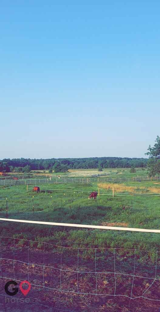 New Generation Equestrian Services Horse stables in North Attleborough MA 4