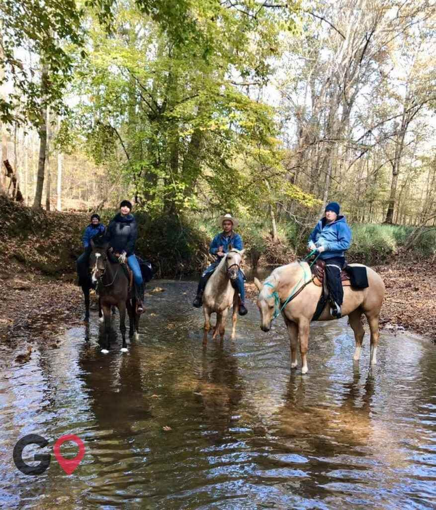 Raintree Equestrian Center Horse stables in Olive Branch MS 10
