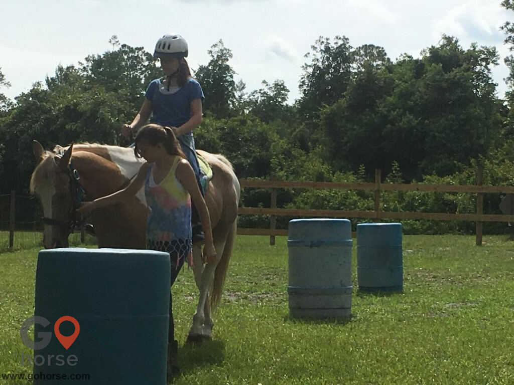 South Mountain Girls Ranch Horse stables in New Smyrna Beach FL 4